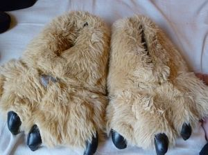 Novelty_Paw_Slippers