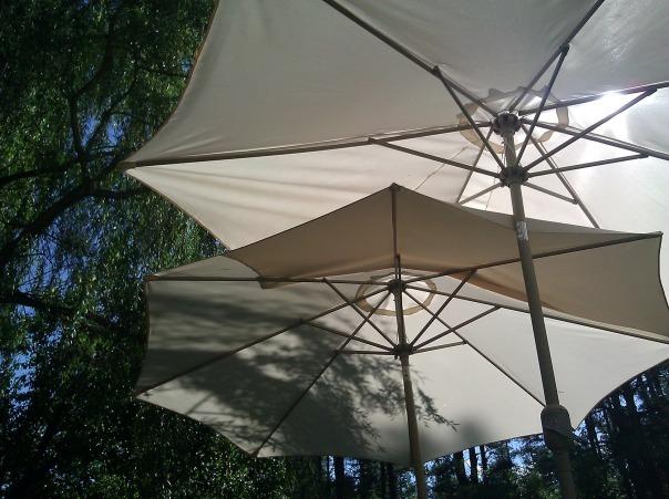 umbrella-51602_1920.jpg